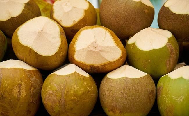 smoothies-sari-kelapa